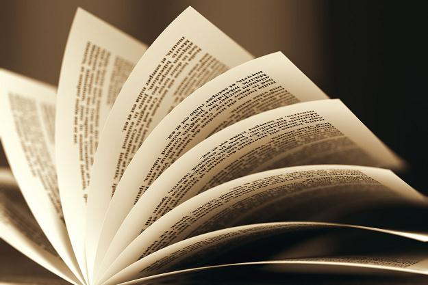 Les librairieetBibliothèque collections de amaigrissement livres brûlées sont au cœur de Lemieuxéditeur la crise de la minceur lecture
